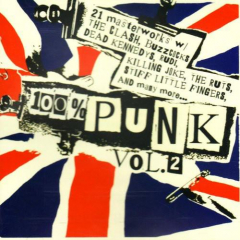 100% Punk Vol.2 - Various artists (CD)