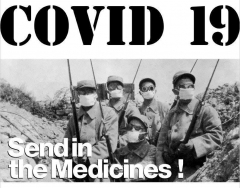 Covid19 - Send in the medicines T-Shirt (grey)