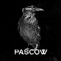 Pascow - Diene der Party (LP) black Vinyl + Booklet + MP3